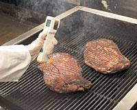Fluke FoodPro Termómetro para Alimentação